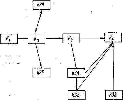 Схема разветвленного программирования
